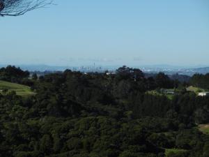 City Views - Bush Views, why not enjoy Both?