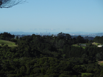 Waitakere Properties For Sale Waitakere, West Auckland: City Views - Bush Views, why not enjoy Both?