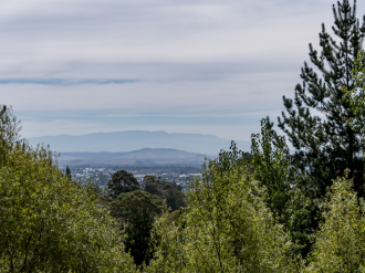 Havelock North Properties For Sale Havelock North, Hastings: Birdsong, Trees, Views, Space and Privacy