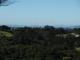 : City Views - Bush Views, why not enjoy Both?
